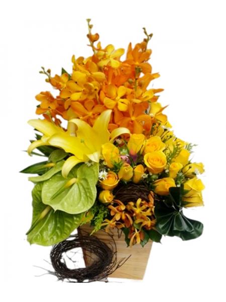 Shop hoa tươi huyện Củ Chi TPHCM