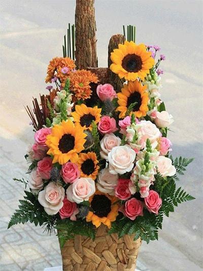 Hộp hoa tươi HSH003